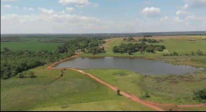 Terreno de 9.019 hectáreas - 3