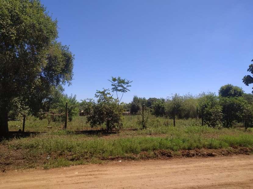 6 terrenos en Monday km 10 - 2