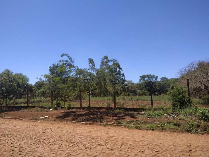 6 terrenos en Monday km 10 - 3