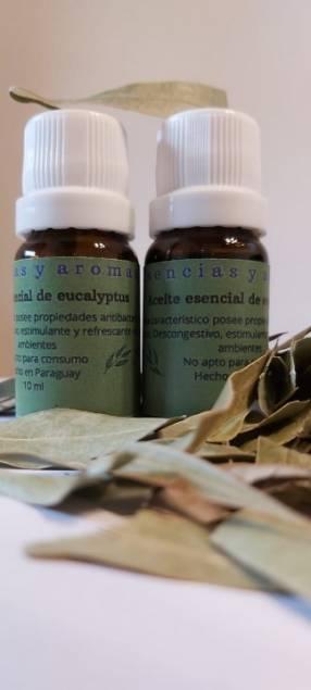 Aceite esencial de eucalyptus