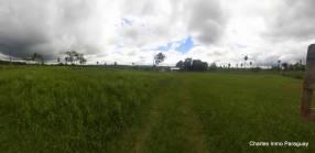 Terreno 2.6 hectáreas zona La Colmena