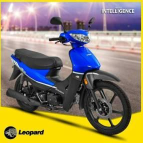 Moto Leopard HB110 Intelligence