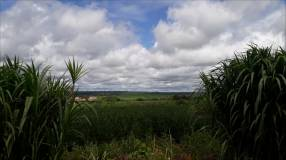 Propiedad en Guayaibí de 30 hectáreas
