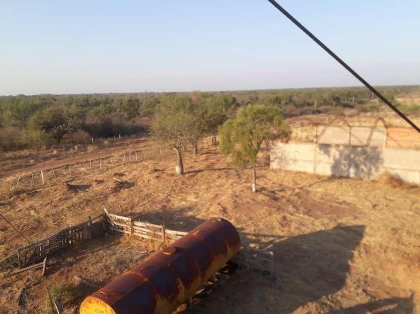 11.236 hectáreas en Teniente Pico - 0