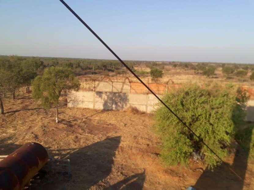 11.236 hectáreas en Teniente Pico - 1