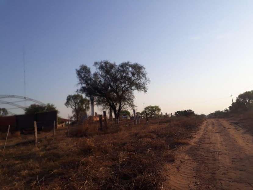 11.236 hectáreas en Teniente Pico - 2