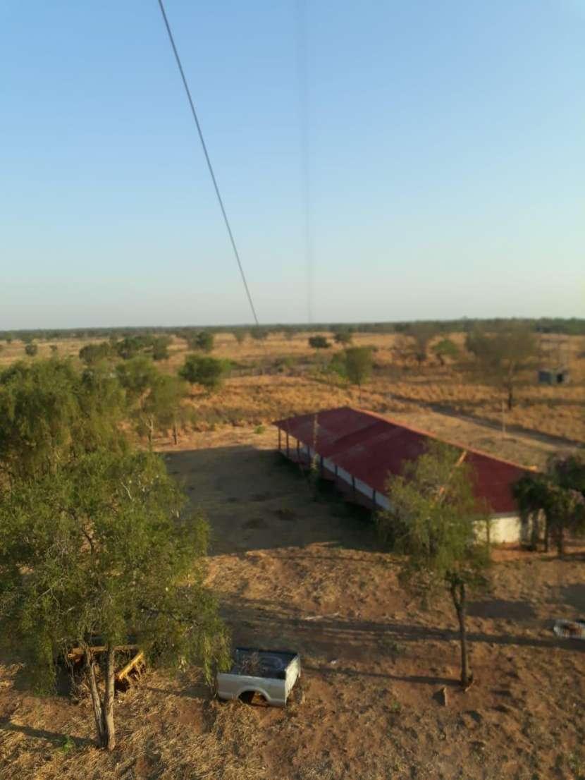 11.236 hectáreas en Teniente Pico - 5