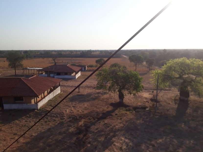 11.236 hectáreas en Teniente Pico - 6
