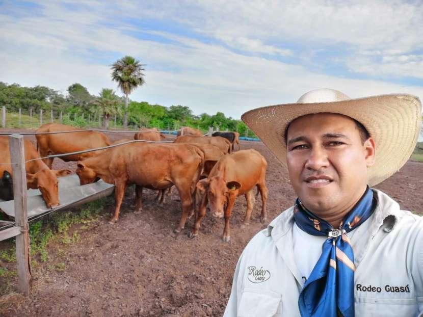 500 hectáreas - 0