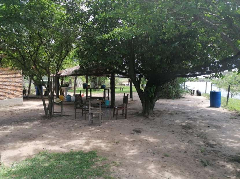 500 hectáreas - 3