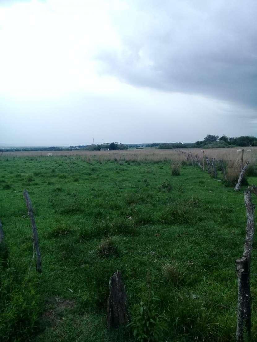 Terreno de 6 hectáreas - 0