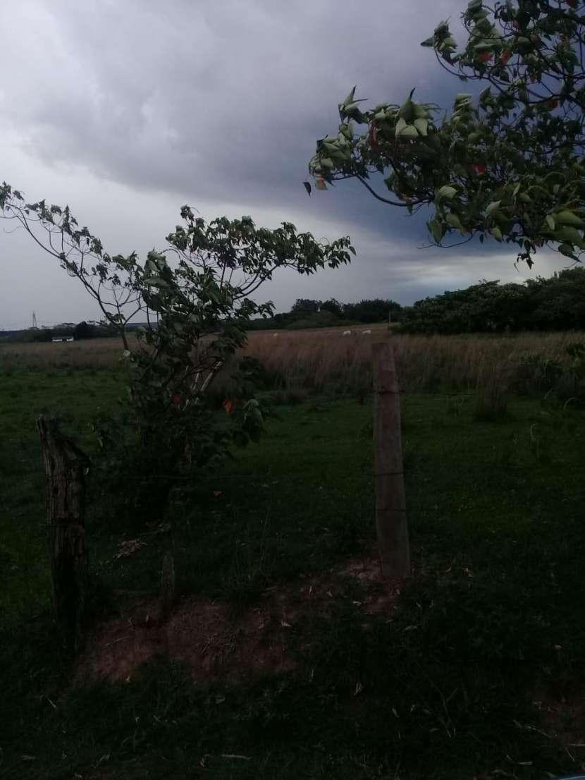 Terreno de 6 hectáreas - 1