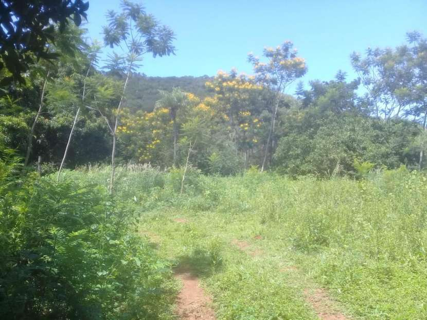 Terreno de 10x50 zona Ruta 1 - 1