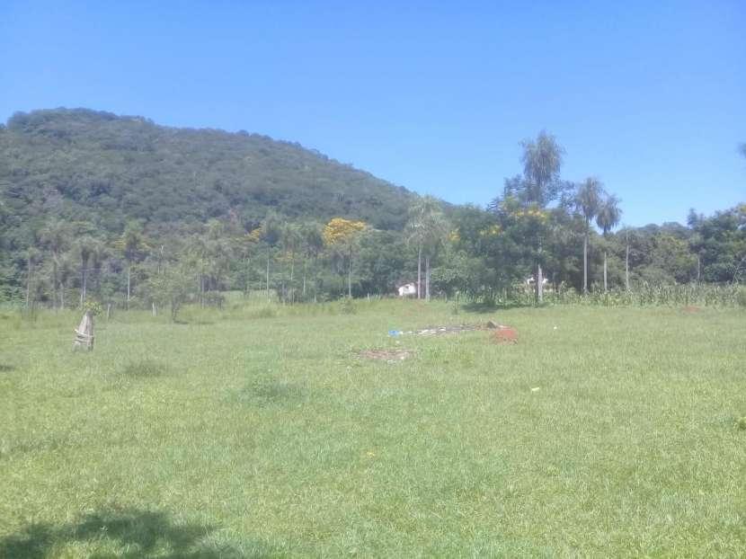 Terreno de 10x50 zona Ruta 1 - 2