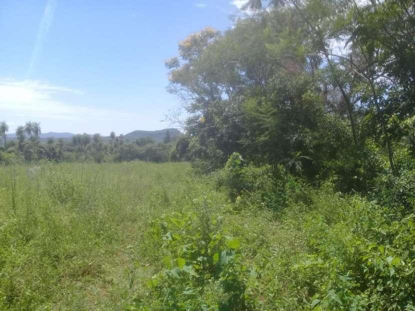 Terreno de 10x50 zona Ruta 1 - 4