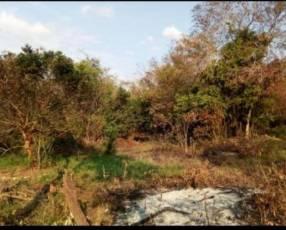 Terreno de 20 hectáreas en Km 168