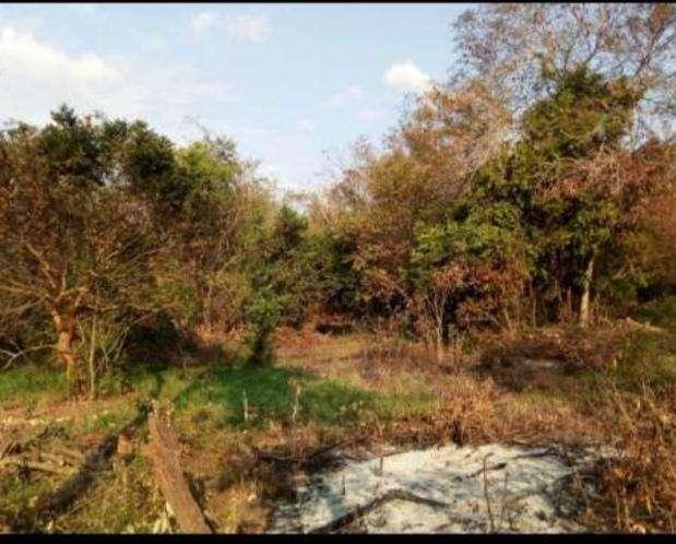 Terreno de 20 hectáreas en Km 168 - 0