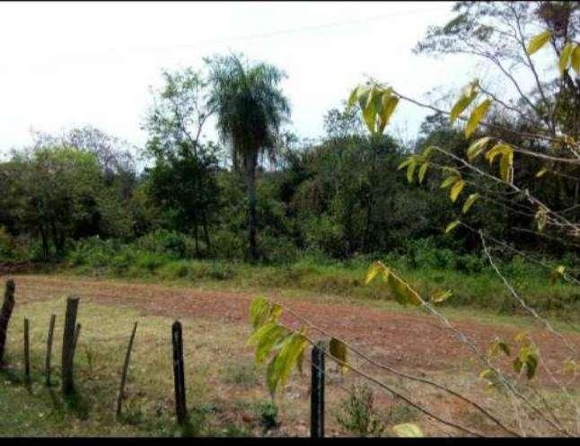Terreno de 20 hectáreas en Km 168 - 1