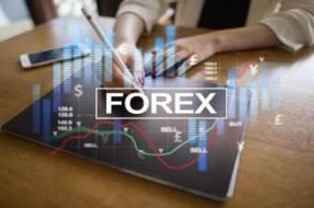 Curso de Forex Trading