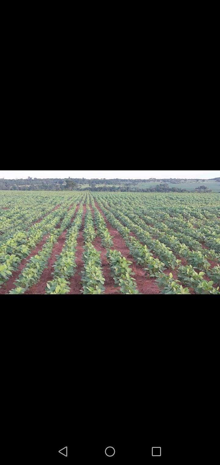 Propiedad rural en Caaguazú - 0