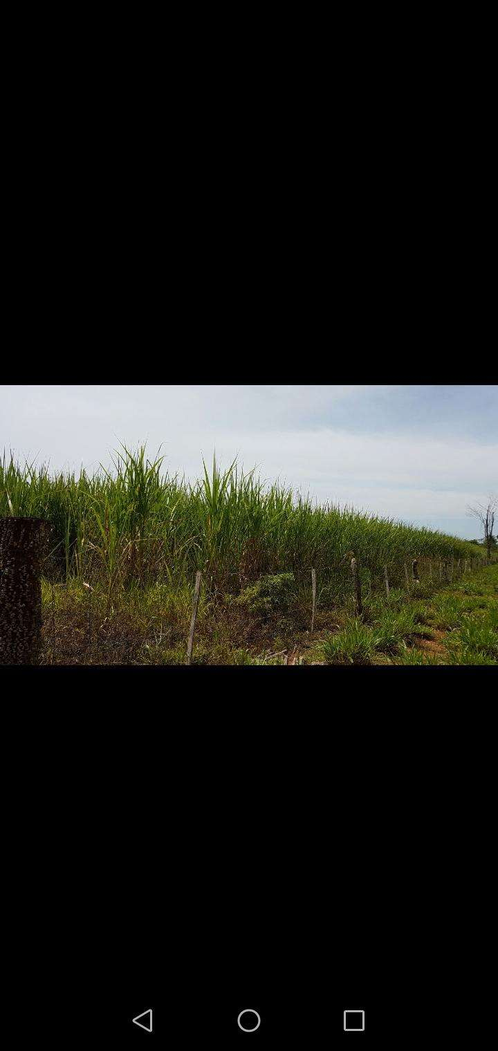 Propiedad rural en Caaguazú - 2