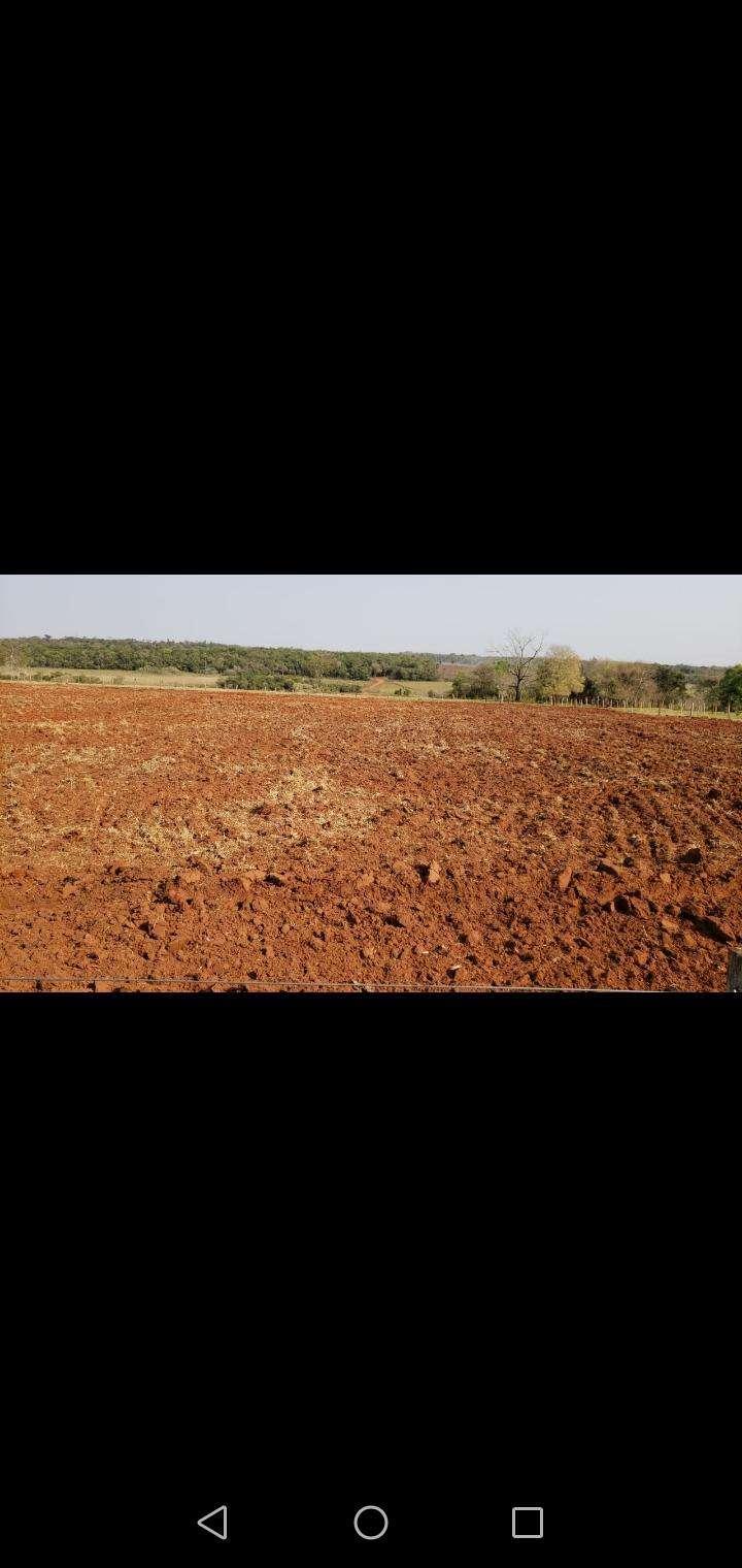 Propiedad rural en Caaguazú - 5