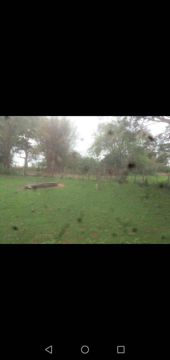 Terreno de 162 hectáreas - 3