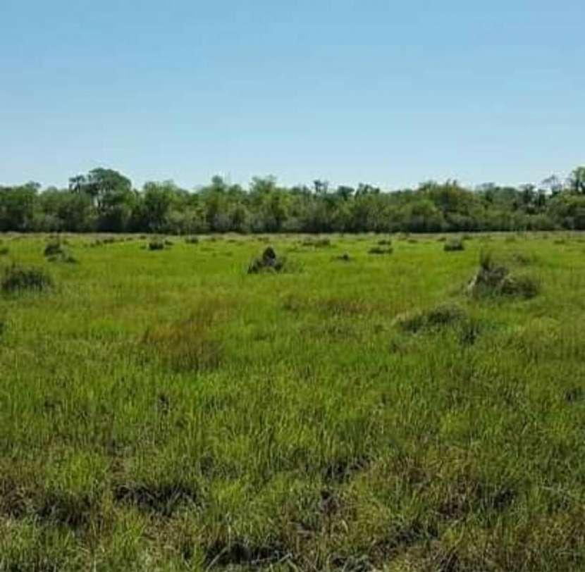 Campo de 343 hectáreas en Yataity Los Laureles - 0