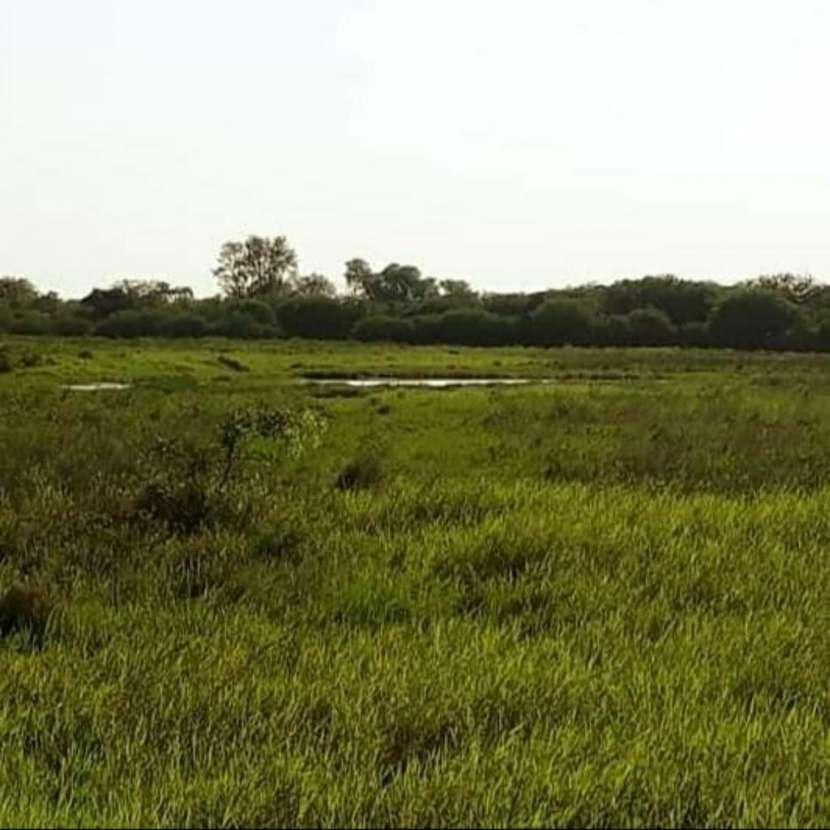 Campo de 343 hectáreas en Yataity Los Laureles - 1