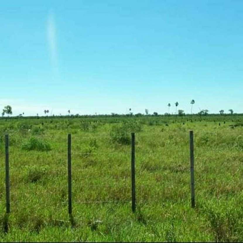 Campo de 343 hectáreas en Yataity Los Laureles - 2