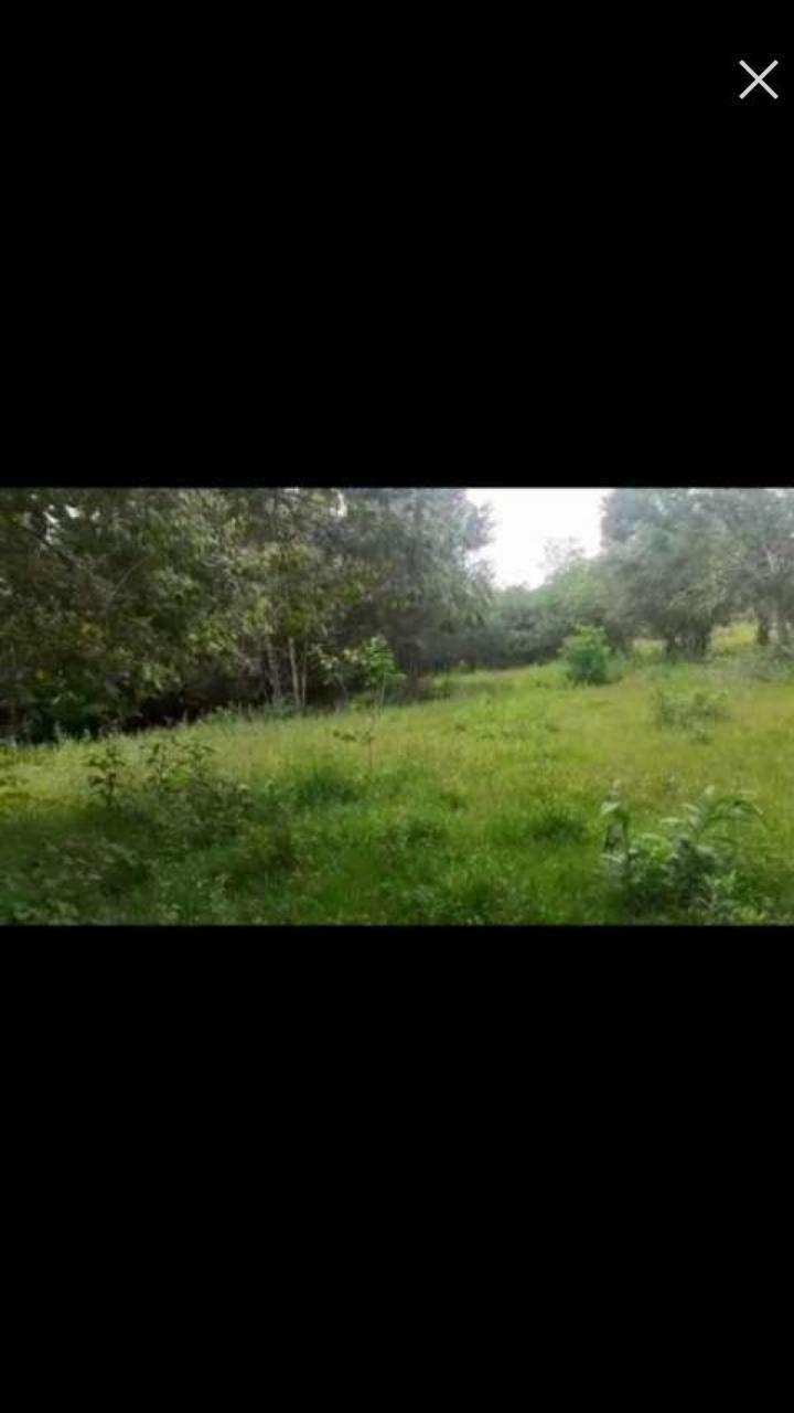 Terreno de 3 hectáreas en Caaguazú - 0