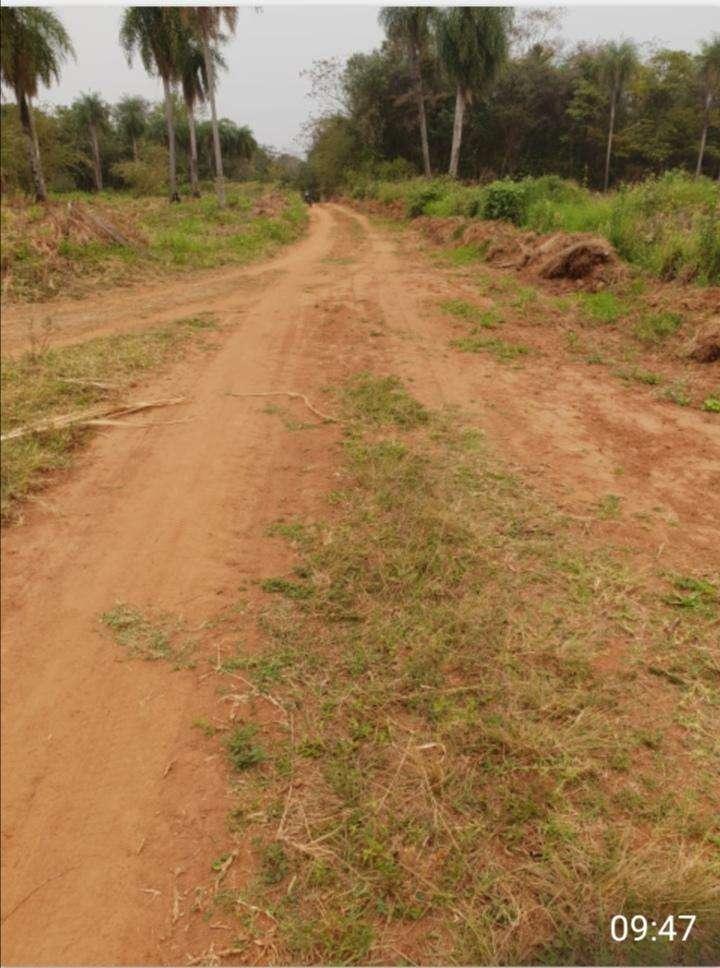 Terreno de 88 hectáreas en Nueva Colombia - 0