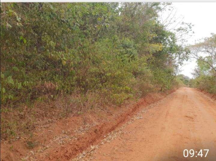 Terreno de 88 hectáreas en Nueva Colombia - 2