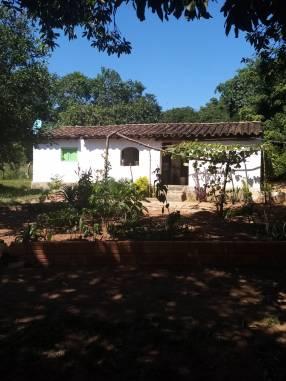 Terreno de 60x60 en Caacupé con arroyo