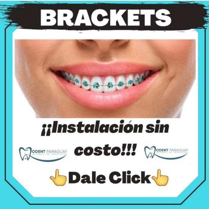 Seguro odontológico - 1