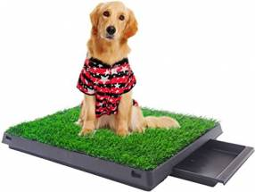 Orinal portátil para perros