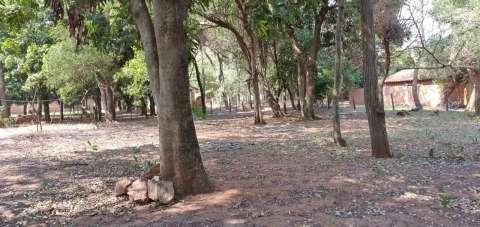 Terrenos en Capiatá Km 23 ruta 2 - 1
