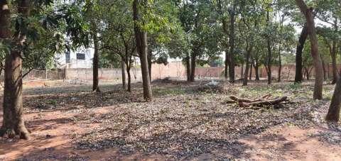 Terrenos en Capiatá Km 23 ruta 2 - 2