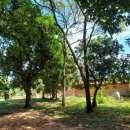 Terrenos en Capiatá Km 23 ruta 2 - 5