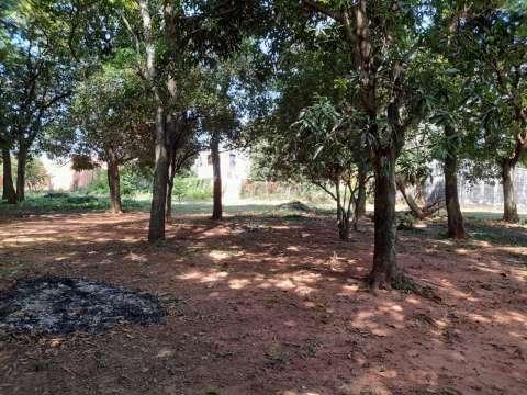 Terrenos en Capiatá Km 23 ruta 2 - 7