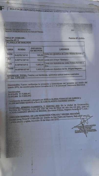 Terreno 30 hectáreas en Alto Verá Itapúa - 7