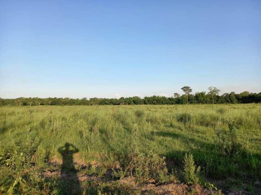 Terreno 30 hectáreas en Alto Verá Itapúa - 5