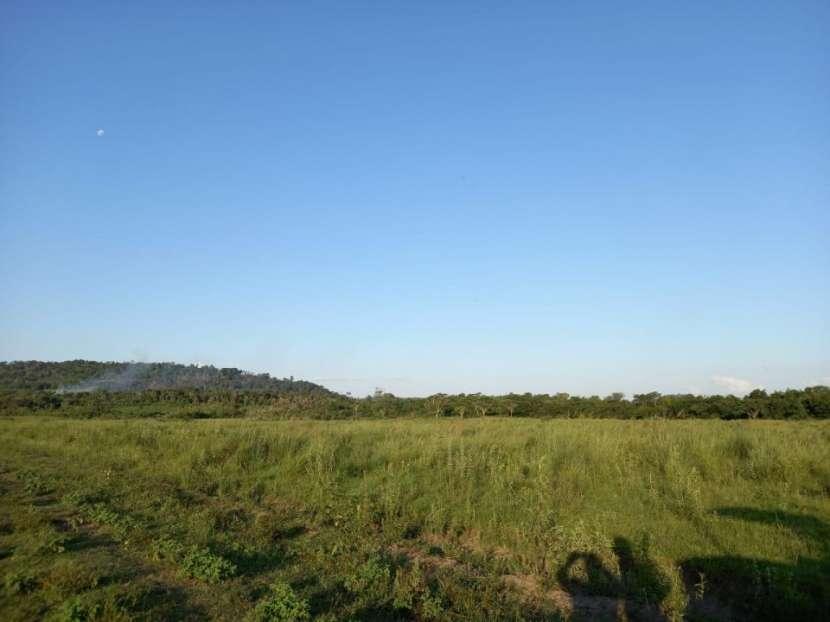 Terreno 30 hectáreas en Alto Verá Itapúa - 3