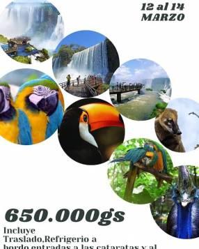Salida a Cataratas del Iguazú + Parque das Aves