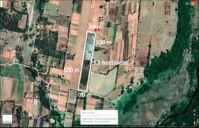 Terreno de 3.5 hectáreas en Nueva Italia zona alta tierra agrícola