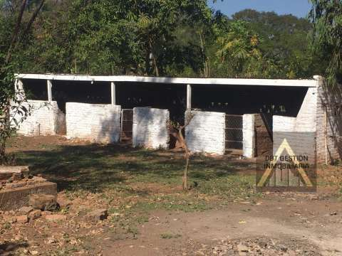 Casa quinta con 12 hectáreas en Cordillera entre Caacupé y Barrero - 5