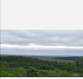 24.000 hectáreas Puerto Casado