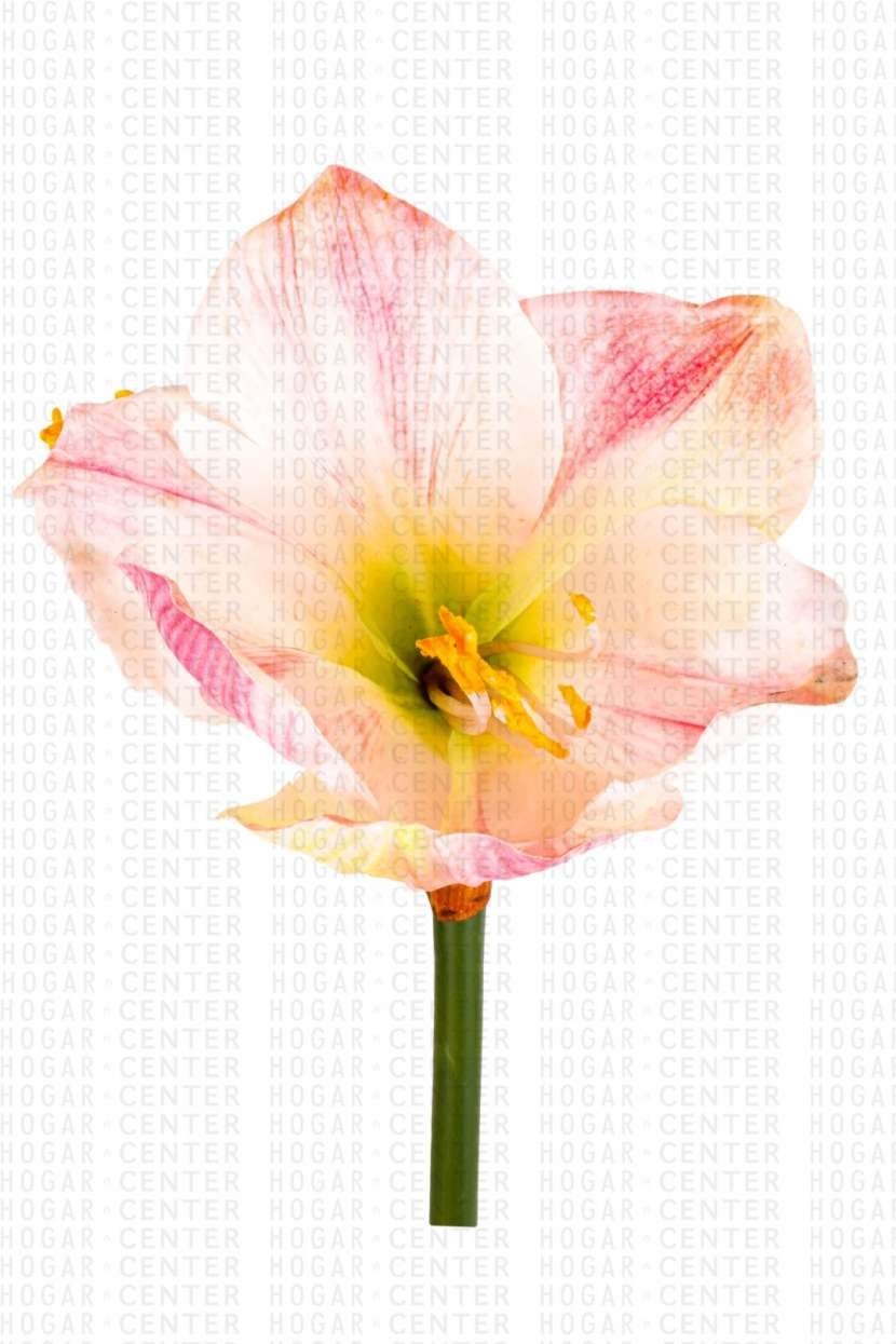 Flor artificial rosa y blanco 67 cm - 1
