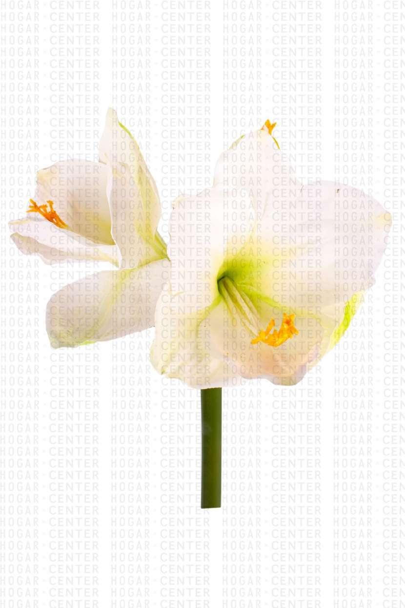 Flor artificial blanco 67 cm - 1