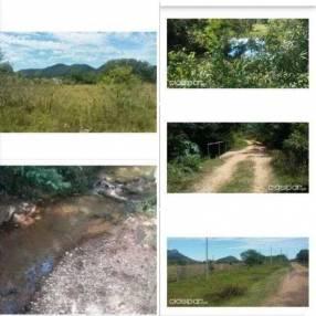 14 hectáreas en Paraguarí cod 1473